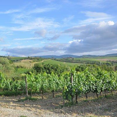 Vin fra Toscana