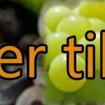 Druer til vin - vindruer
