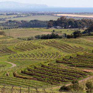 Vin fra Australien