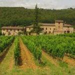 Vinsmagning og vintur til Chianti